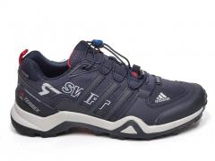 Adidas Terrex SwiftR GTX Navy/Grey/Red