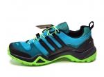 Adidas Terrex SwiftR GTX Blue/Black/Green