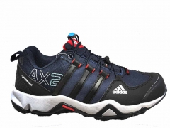 Adidas Terrex AX2 GTX Navy