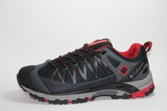 Columbia Shoes Low GTX Grey/Black/Red